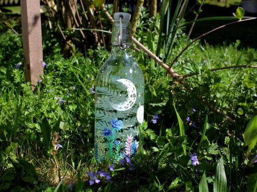 Birds in the meadow hand painted water bottle